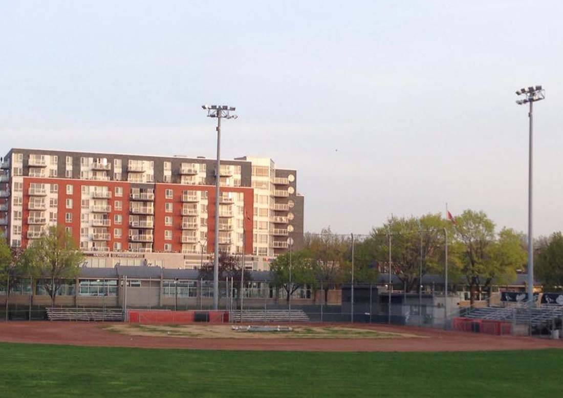 rénovation pelouse terrain de Baseball - Verkest